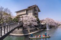 岐阜県 桜咲く四季の広場と舟下り