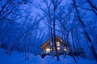 雪の林と明かりの燈るロッジ