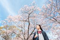 桜を眺める女子学生