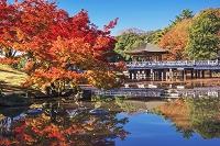 奈良県 奈良公園 鷺池と浮見堂
