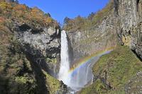 栃木県 虹がかかる紅葉の華厳の滝