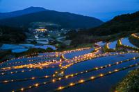 岐阜県 坂折棚田 田の神様灯祭り