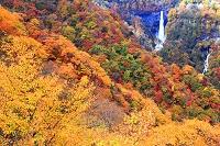 栃木県 日光 明智平から華厳の滝