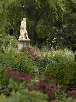 イギリス ロンドン チェルシー薬草園