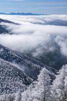 長野県 霧氷の林と南アルプス