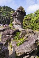 宮崎県 陰陽石