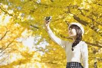 イチョウの紅葉を撮影する日本人女性