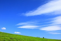 長野県 霧ヶ峰高原 草原と雲
