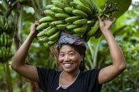 バナナを運ぶ女性
