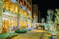 福岡県 福岡市中央区_六本松421 クリスマス2017