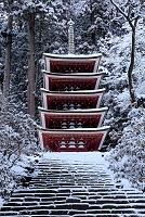 奈良県 宇陀市 室生寺 五重塔