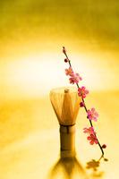 茶せんと梅の花
