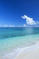 鹿児島県 兼母海岸と積乱雲と海