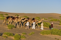 オマーン 砂漠の国