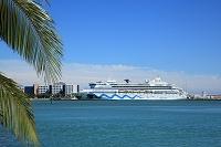 アメリカ合衆国 フロリダ 停泊中の客船