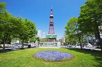 北海道 テレビ塔と大通公園