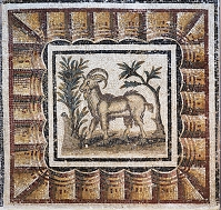 チュニジア エル・ジェムで出土したモザイク バルドー博物館