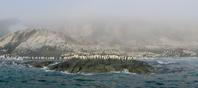 南極大陸 海