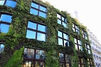 パリ 壁面緑化されたビル