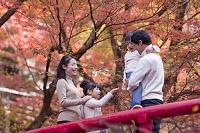紅葉狩りをする日本人家族