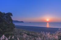 三重県 獅子岩の朝日