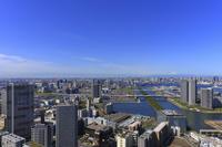 東京都 江東区 富士山 豊洲市場 東京オリンピック会場