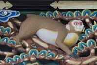 栃木県 日光東照宮 猿の彫刻 妊娠した猿(平成の大修理完成後)