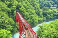 日本 富山県 新緑のトロッコ列車