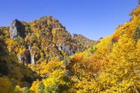 北海道 紅葉の豊平峡 千丈岩