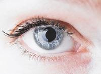 白人女性の目