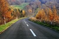 北海道 晩秋の山の道