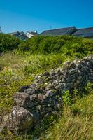 敷地を分ける石垣の名残