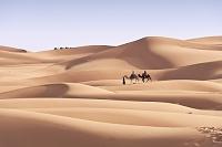 モロッコ シェビ砂丘