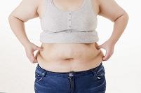 女性のお腹の脂肪