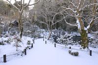 京都府 圓光寺 十牛之庭の雪景色