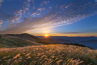和歌山県 朝の生石高原