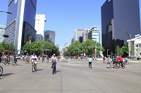 メキシコ 日曜日のレフォルマ通り