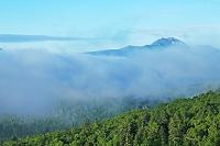 北海道 三国峠から望むニペソツ山
