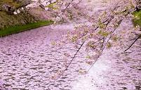 青森県 弘前公園