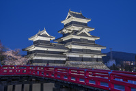 長野県 松本城夜景