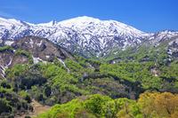 山形県 萌黄の樽口峠より飯豊連峰 朳差岳