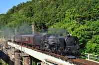 群馬県 上越線を行くSL列車