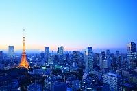 東京都 都心の街並みとライトアップされた東京タワー