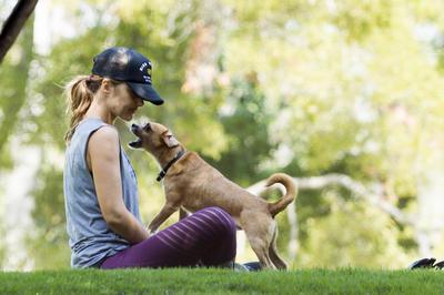 セレブが犬を愛する時