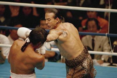 ボクシングのネコパンチが話題に