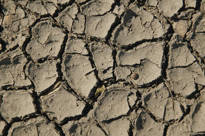 干ばつ・砂漠化