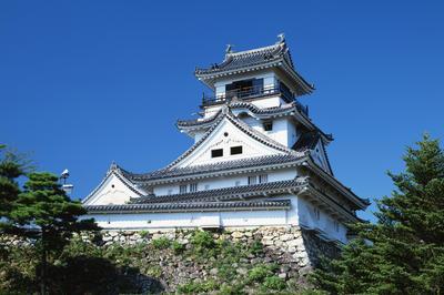 生誕から27歳まで: 高知県高知市
