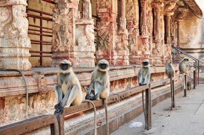 インドの世界遺産すべて