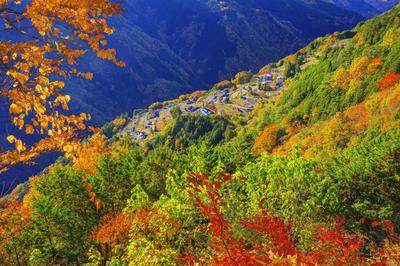 自然・風景