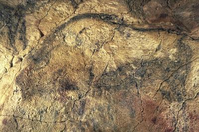 アルタミラの洞窟壁画 | スペイン